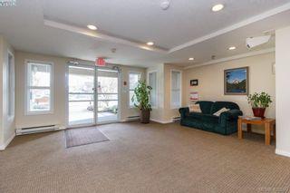 Photo 21: 202 1536 Hillside Ave in VICTORIA: Vi Oaklands Condo for sale (Victoria)  : MLS®# 808123
