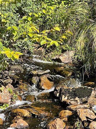 Photo 41: - Saint David Ridge in St. Stephen: Vacant Land for sale : MLS®# NB063465