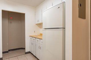 Photo 3:  in Edmonton: Zone 02 Condo for sale : MLS®# E4246424