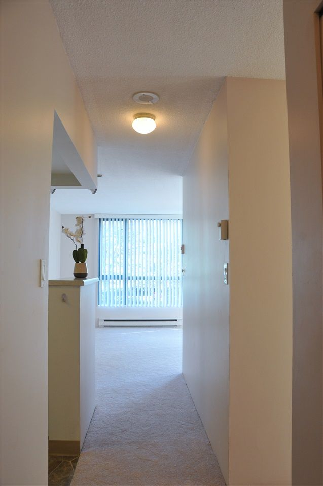 Photo 2: Photos: 203 838 AGNES STREET in New Westminster: Downtown NW Condo for sale : MLS®# R2113598