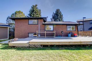 Photo 49: 1931 Pinetree Crescent NE in Calgary: Pineridge Detached for sale : MLS®# A1153335