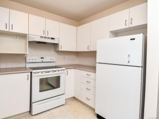 Photo 4: 307B 670 S Island Hwy in CAMPBELL RIVER: CR Campbell River Central Condo for sale (Campbell River)  : MLS®# 791215