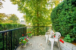 """Photo 54: 41 15450 ROSEMARY HEIGHTS Crescent in Surrey: Morgan Creek Townhouse for sale in """"CARRINGTON"""" (South Surrey White Rock)  : MLS®# R2301831"""