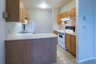Photo 20: 308 1686 Balmoral Ave in : CV Comox (Town of) Condo for sale (Comox Valley)  : MLS®# 861312