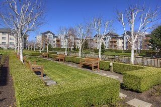 """Photo 18: 130 5500 ANDREWS Road in Richmond: Steveston South Condo for sale in """"SOUTHWATER"""" : MLS®# V882835"""