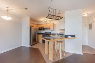 Photo 7: 303 1631 28 Avenue SW in Calgary: South Calgary Apartment for sale : MLS®# A1109353