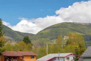 Photo 21: 41 Poplar St in : Du Lake Cowichan House for sale (Duncan)  : MLS®# 873800
