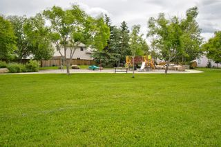Photo 45: 63 MT Apex Green SE in Calgary: McKenzie Lake Detached for sale : MLS®# A1009034