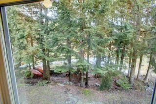 """Photo 14: C103 1400 ALTA LAKE Road in Whistler: Whistler Creek Condo for sale in """"TAMARISK"""" : MLS®# R2322055"""