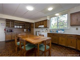 Photo 11: 3601 Cedar Hill Rd in VICTORIA: SE Cedar Hill House for sale (Saanich East)  : MLS®# 739653