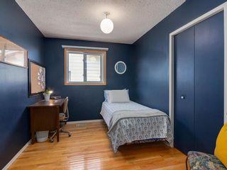 Photo 17: 20 FALCONRIDGE Place NE in Calgary: Falconridge Semi Detached for sale : MLS®# C4302854