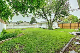 Photo 15: 1228 19 Street NE in Calgary: Mayland Heights Detached for sale : MLS®# A1118594