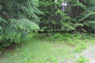 Photo 2: 108 Airstrip Road in Anglemont: North Shuswap Land Only for sale (Shuswap)  : MLS®# 10067018