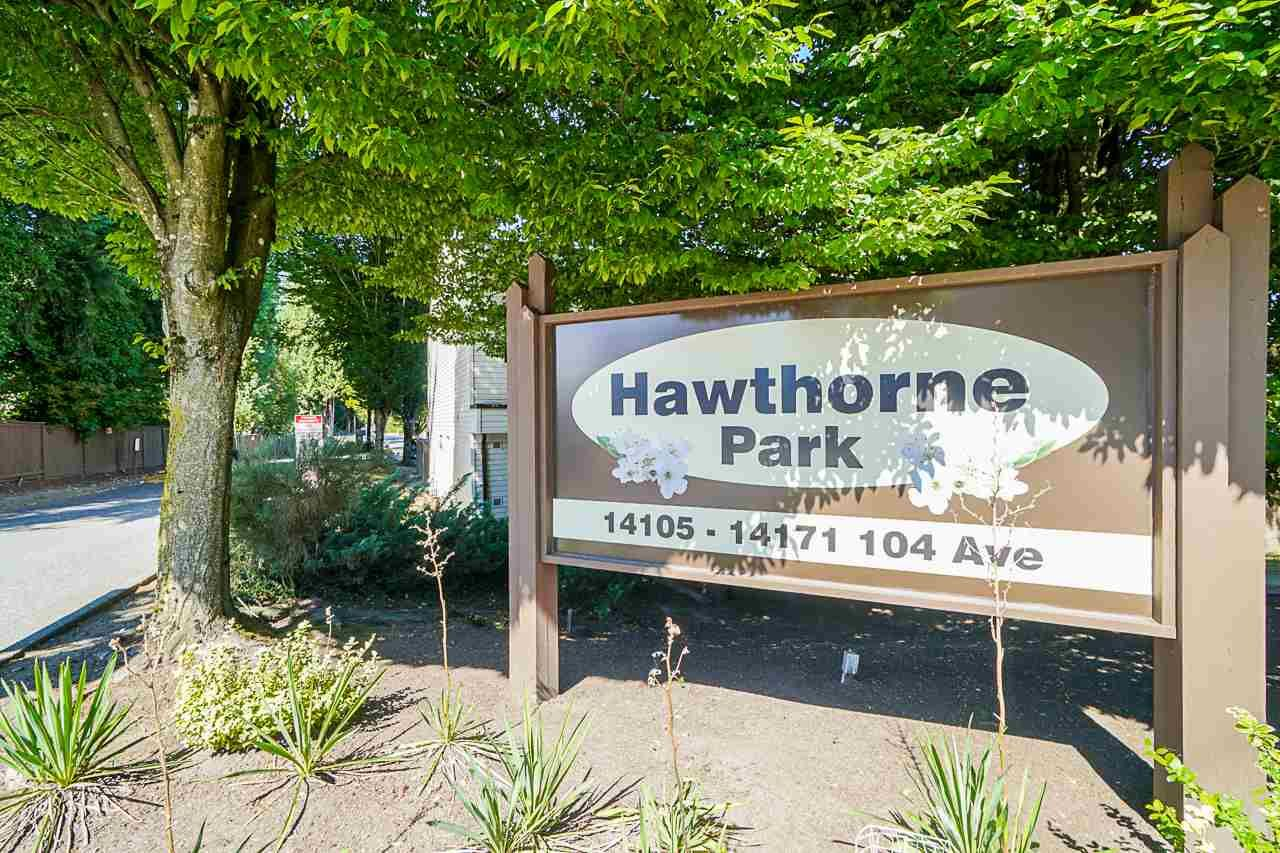 """Main Photo: 37 14111 104 Avenue in Surrey: Whalley Townhouse for sale in """"HAWTHORNE PARK"""" (North Surrey)  : MLS®# R2488903"""