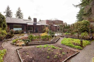 """Photo 35: 4195 DONCASTER Way in Vancouver: Dunbar House for sale in """"DUNBAR"""" (Vancouver West)  : MLS®# R2238162"""