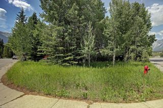 Photo 7: 2 Pinewood Crescent: Canmore Residential Land for sale : MLS®# A1128856
