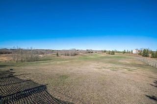 Photo 10: 30092 Bunny Hollow Drive in Rural Rocky View County: Rural Rocky View MD Detached for sale : MLS®# A1104471