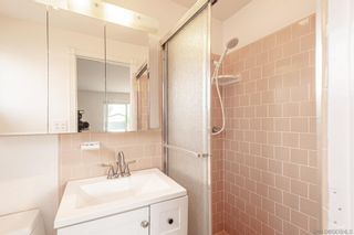 Photo 13: IMPERIAL BEACH House for sale : 4 bedrooms : 323 Donax Ave