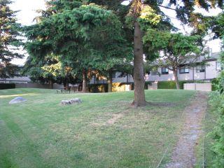 "Photo 49: 46 6712 BAKER Road in Delta: Sunshine Hills Woods Townhouse for sale in ""SUNRIDGE ESTATES"" (N. Delta)  : MLS®# F2912502"