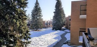 Photo 23: 202 3506 44 Street SW in Calgary: Glenbrook Apartment for sale : MLS®# A1075922