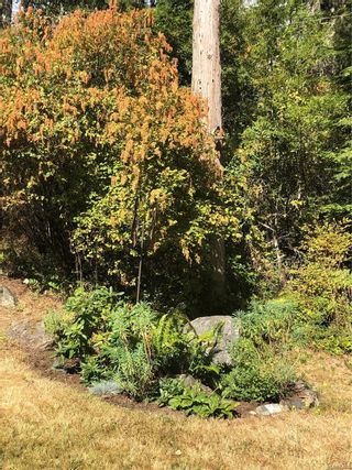 Photo 53: 292 Long Harbour Rd in : GI Salt Spring House for sale (Gulf Islands)  : MLS®# 884293