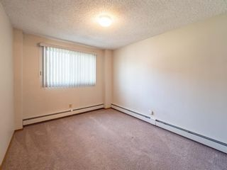 Photo 13: 213 3420 50 Street NW in Calgary: Varsity Apartment for sale : MLS®# A1095865