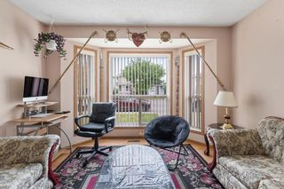 Photo 9: 249 martindale Boulevard NE in Calgary: Martindale Detached for sale : MLS®# A1116896