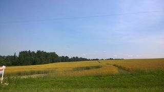 Photo 3: 51425 RGE RD 280: Rural Parkland County Rural Land/Vacant Lot for sale : MLS®# E4230243