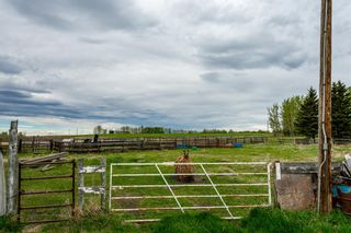 Photo 39: 3363 303 Township: Rural Mountain View County Detached for sale : MLS®# A1080846