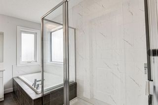 Photo 35: 216 Red Sky Terrace NE in Calgary: Redstone Detached for sale : MLS®# A1125516
