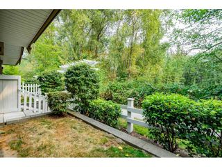 """Photo 17: 45 19250 65 Avenue in Surrey: Clayton Townhouse for sale in """"SUNBERRY COURT"""" (Cloverdale)  : MLS®# R2297371"""
