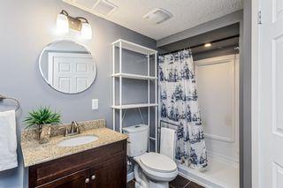 Photo 23: 27 Auburn Bay Manor SE in Calgary: Auburn Bay Detached for sale : MLS®# A1073937