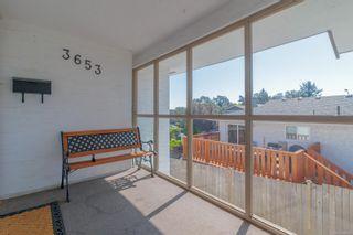 Photo 36: 3653 Bridgeport Pl in : SE Maplewood House for sale (Saanich East)  : MLS®# 884136