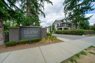 Main Photo: 11 14377 60 Avenue in Surrey: Sullivan Station Townhouse for sale : MLS®# R2613790