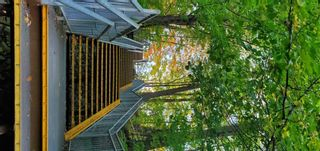 Photo 31: 53 2120 Rathburn Road in Mississauga: Rathwood Condo for sale : MLS®# W5310866