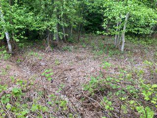 Photo 7: Lot 5 McBride: Blind Bay Land Only for sale (Shuswap)  : MLS®# 10231300