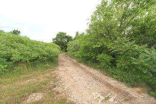 Photo 10: Lt 1&2 Shore Road in Brock: Rural Brock Property for sale : MLS®# N5281421