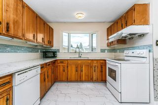 Photo 14: 11715 39 Avenue in Edmonton: Zone 16 House for sale : MLS®# E4253601