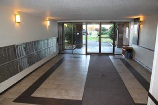 """Photo 3: 319 45598 MCINTOSH Drive in Chilliwack: Chilliwack W Young-Well Condo for sale in """"MCINTOSH MANOR"""" : MLS®# R2559581"""