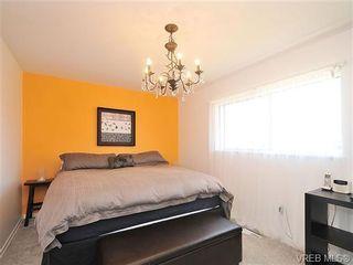 Photo 10: 4021 Oberlin Pl in VICTORIA: SE Gordon Head House for sale (Saanich East)  : MLS®# 648108