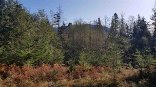 Photo 19: Keats Island-10 acres with a cabin and two bunkhouses for sale