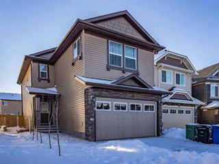 Main Photo: 91 Skyview Shores Road in Calgary: Skyview Ranch Detached for sale : MLS®# A1104055