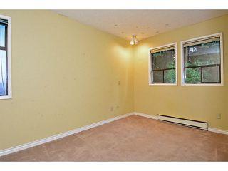 "Photo 47: 12363 NEW MCLELLAN Road in Surrey: Panorama Ridge House for sale in ""Panorama Ridge"" : MLS®# F1424205"