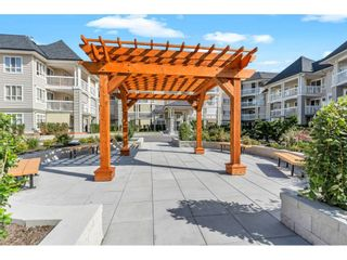 """Photo 2: 117 22022 49 Avenue in Langley: Murrayville Condo for sale in """"Murray Green"""" : MLS®# R2620462"""