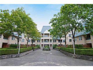 Photo 1: 319 295 SCHOOLHOUSE Street in Coquitlam: Maillardville Condo for sale : MLS®# V1028195