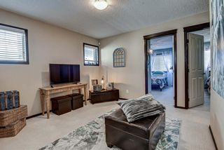 Photo 31: 192 Everoak Circle SW in Calgary: Evergreen Detached for sale : MLS®# A1089570