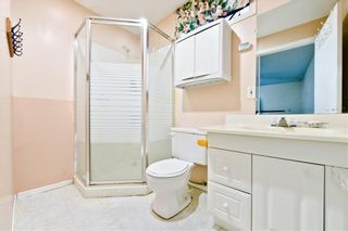 Photo 27: 50 Martindale Mews NE in Calgary: Martindale Detached for sale : MLS®# A1114466