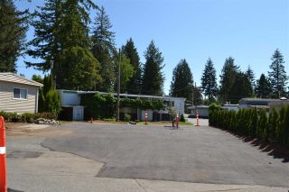 """Photo 2: 2 24330 FRASER Highway in Langley: Salmon River Manufactured Home for sale in """"Langley Grove"""" : MLS®# R2584054"""