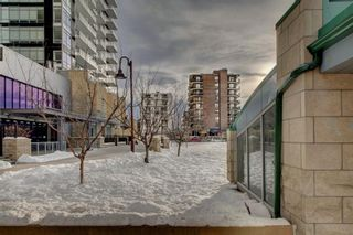 Photo 30: 203 215 14 Avenue SW in Calgary: Beltline Apartment for sale : MLS®# A1092010