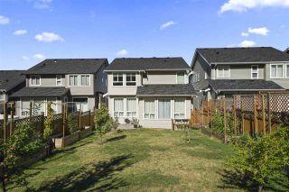 Photo 36: 10482 MCEACHERN Street in Maple Ridge: Albion House for sale : MLS®# R2492704